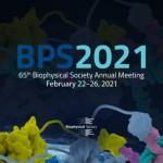 BPS2021