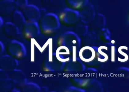 Join us on the island of Hvar at the EMBO Conference on Meiosis 2017