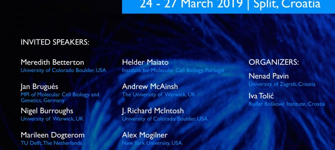Conference in March 2019! Mitotic spindle: From living and synthetic systems to theory